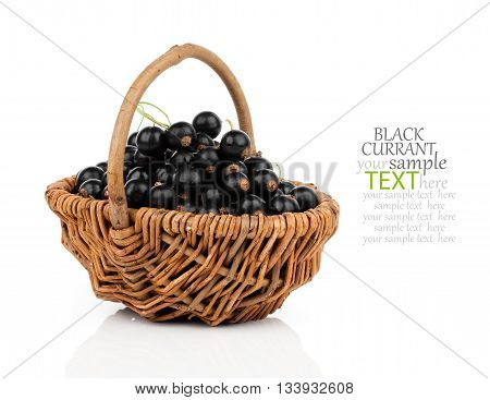 basket with black currant berries over white