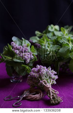 Bouquet of fragrant herbs. Mint and thyme. The style of the dark photo. Selective focus.