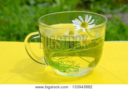 Tea with a camomile on a yellow background, therapeutic agents camomile - traditional medicine