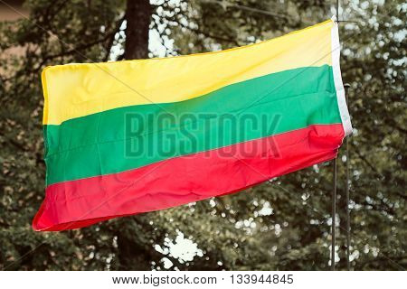 Lithuanian national flag waving on trees background