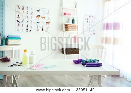 Stylish groomer interior