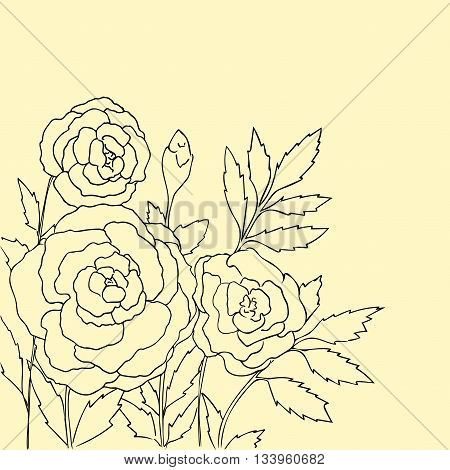 Beautiful roses isolated on soft yellow background. Hand drawn vector illustration with flowers. Retro floral card. Romantic delicate bouquet. Element for design. Contour lines and strokes.