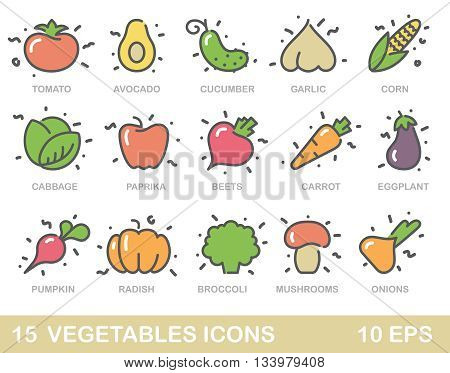 Contour stylized icons of vegetables mushrooms and avocado