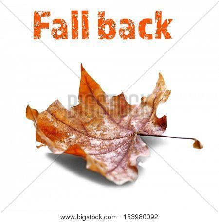 Golden autumn leaf isolated on white background