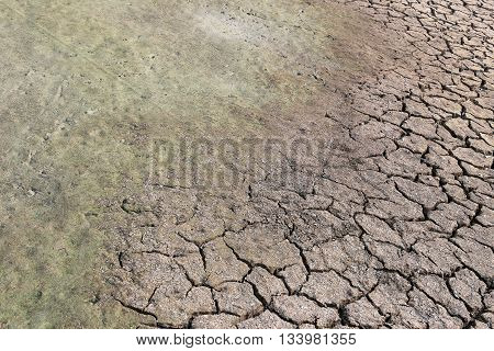 cracked earth and clay soil with water just to dry up because of the heatcountryside of Thailand.