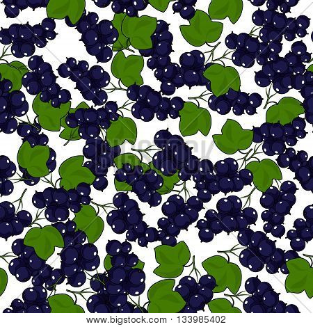 Seamless Blackcurrant Pattern, Fruit Berry Pattern, Vector Illustration