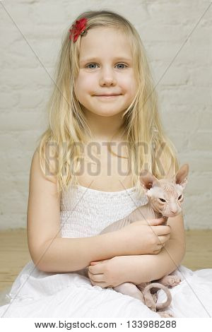 Young beautiful smiling girl with kitten sphinx
