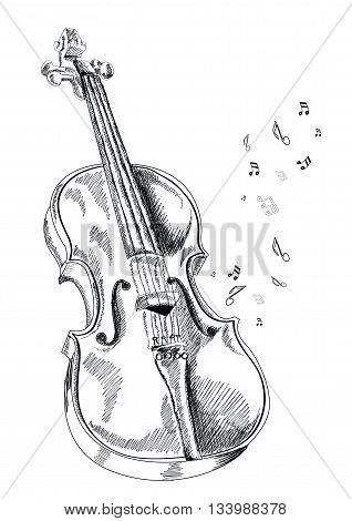 musical instrument violin on white background. Vector.
