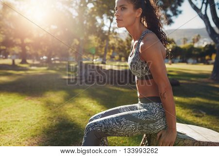 Determined Young Woman Exercising At The Park