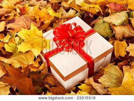 Gift box in fall foliage. Autumn holiday.