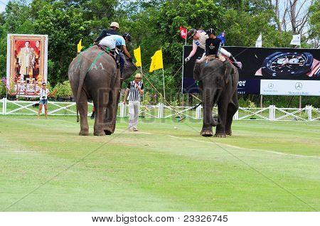Elephant Polo Players