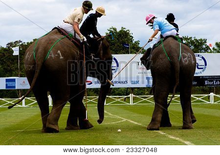 Elephant Polo Games