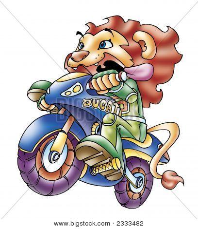 Lion Rider