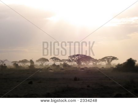 Sunset In Amboseli National Park