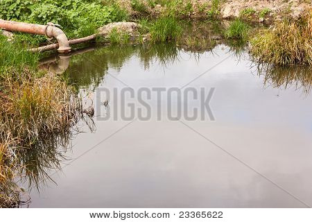 Pipe On Small Lake Surrounded By Herbs