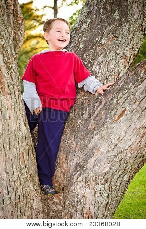 Portrait of young boy or kid in tree outdoors