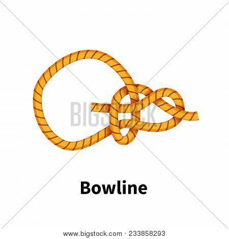 Bowline Sea Knot Bright Colorful