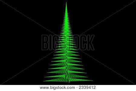 Xmas Green Fern Point