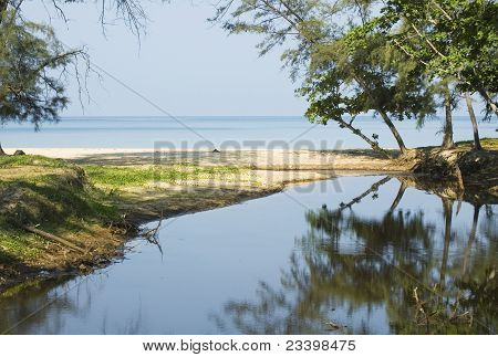 Beach, Sea And Reflection Of Trees