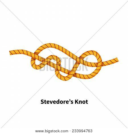 Stevedores Sea Knot Bright Colorful