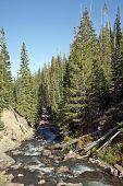 foto of colorado high country  - White water stream runs through a high mountain valley - JPG