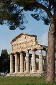 picture of ceres  - Greek Temples of Paestum Magna GraeciaTemple of Ceres aka Temple of Athena - JPG
