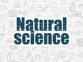 Science Concept: Painted Blue Text Natural Science On White Brick Wall Background With  Hand Drawn S poster