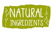 Natural Ingredients Hand Drawn Label Isolated Illustration. Natural Beauty, Healthy Lifestyle, Eco S poster
