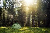 View Of Tent In Forest At Sunset Or Sunrise. Camping Background.tourist Tent In Green Pine Forest Wi poster