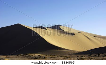 Beautiful Sand Dune