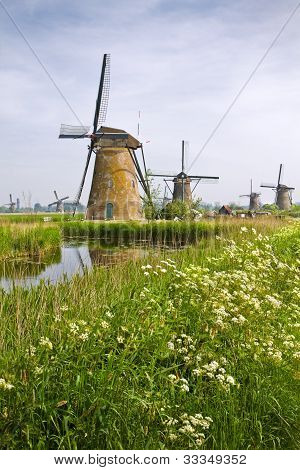Windmills At Kinderdijk, The Netherlands In Spring