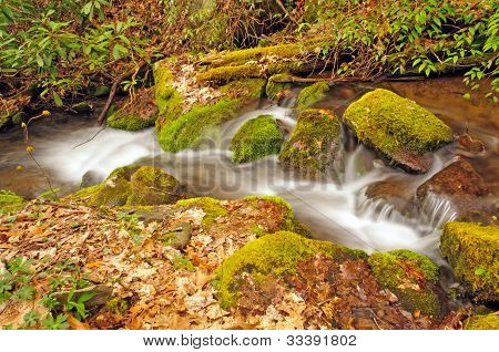 Appalachian Stream In The Spring