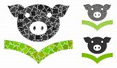 Pig Knowledge Mosaic Of Abrupt Elements In Variable Sizes And Shades, Based On Pig Knowledge Icon. V poster
