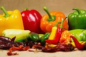 stock photo of poblano  - Stock image of chilli pepper still life very colorful and varied - JPG