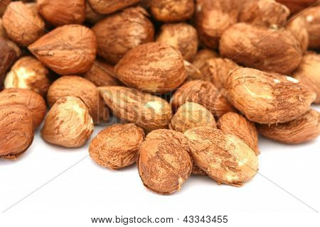 Many hazel nuts on white background