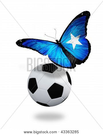 Concept - Butterfly With Somalian Flag Flying Near The Ball, Like Football Team Playing
