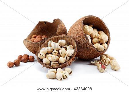 Pistachio, Peanuts Nuts And Hazelnuts In The Shell Of The Coconut.