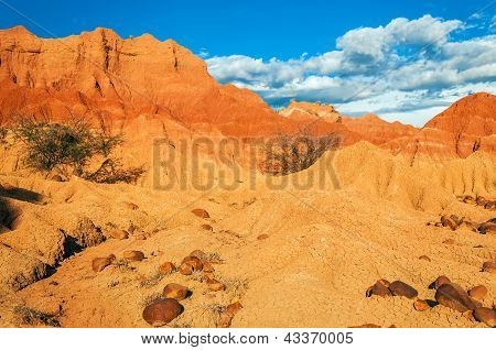 Red Desert And Rocks