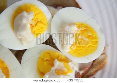 Halved egg yolks with mayonnaise