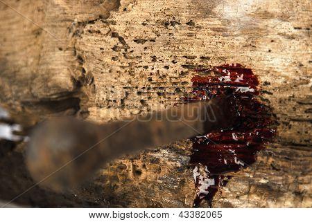 clavo oxidado en madera con gotas de sangre