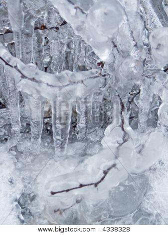 Planta de congelados