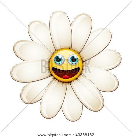 Smiling flower, happy daisy