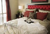 pic of bed breakfast  - Beautifully styled bedroom with lovely red head board and cocktails laying on bed - JPG