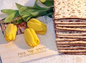 picture of hebrew  - joyful spring festival - jewish holiday of Passover and its attributes