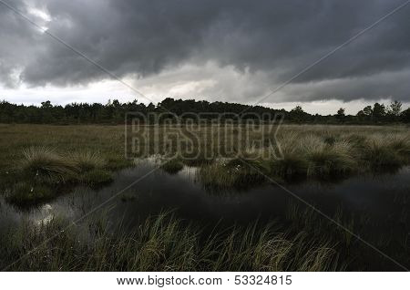 Storm clouds over Thursley Common