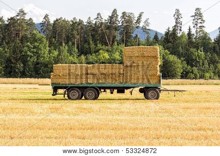 Cart With Hay On It