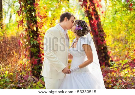 Groom and bride in nature