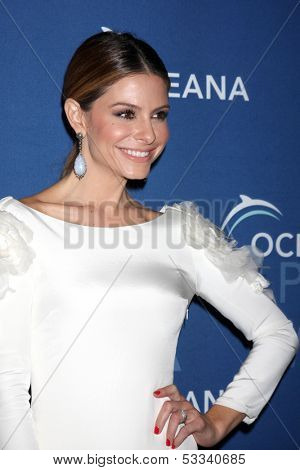 LOS ANGELES - OCT 30:  Maria Menounos at the Oceana's Partners Awards Gala 2013 at Beverly Wilshire Hotel on October 30, 2013 in Beverly Hills, CA