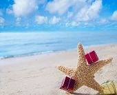 image of starfish  - Starfish with few Christmas gift box on the sandy beach by the ocean - JPG