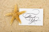 picture of thank you card  - A starfish sitting on a thank you card with a sand background turtle - JPG